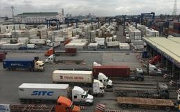 Cả nghìn container rác ngoại vô chủ: Cảng biển còng lưng gánh phí