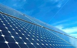 Bamboo Capital (BCG) vừa huy động 1.018 tỷ đồng từ nhà đầu tư Singapore cho mảng năng lượng tái tạo
