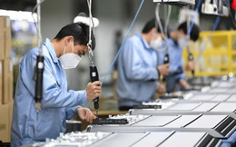 Kịch bản nào cho thị trường lao động năm 2021?