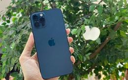 Người Việt cần làm việc bao nhiêu ngày để mua iPhone 12?