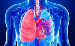 """Khi có 3 biểu hiện này vào buổi sáng, hãy cẩn thận vì phổi của bạn đang """"kêu cứu"""""""