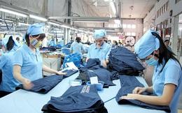 May Việt Tiến (VGG) chốt quyền trả cổ tức bằng tiền tỷ lệ 40%, cao nhất kể từ khi lên sàn