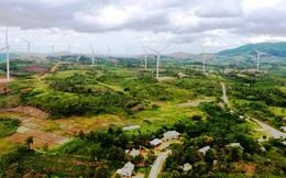 Thêm 2 dự án điện gió được Quảng Trị chấp thuận chủ trương đầu tư