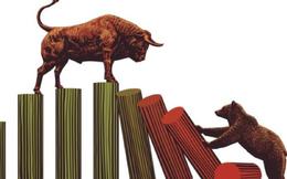 """Cổ phiếu chứng khoán dậy sóng: Đâu là những lý do để """"xuống tiền""""?"""