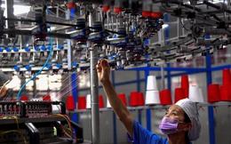 Ngân hàng Thế giới: Nhiều doanh nghiệp Việt vẫn có nguy cơ bị đọng nợ