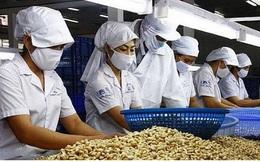 """Covid-19 khiến chuỗi cung ứng hạt điều toàn cầu tiếp tục bị """"phân mảnh"""""""