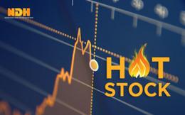 Một cổ phiếu tăng trần 10 phiên liên tiếp
