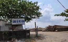 Thanh tra TPHCM kiến nghị xử lý tình trạng 'xẻ thịt' đất công viên