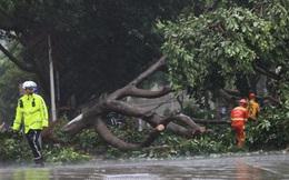 Bão Mekkhala đổ bộ tỉnh Phúc Kiến, Trung Quốc phát cảnh báo mưa bão kép