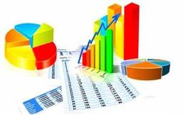 TMS, DBC, ADS, CSV, NKG, VNM, DPG: Thông tin giao dịch lượng lớn cổ phiếu