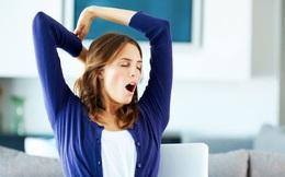 Thường xuyên ngáp chứng tỏ 3 bộ phận trên cơ thể xuất hiện vấn đề