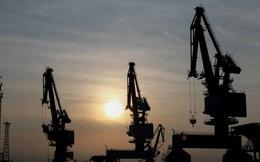 Công ty Nhật: Kế hoạch dời nhà máy đến VN có từ 10 năm trước và càng phù hợp vào lúc này