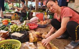 Măng rừng vào mùa tươi ngon, ngập tràn chợ Hà Nội