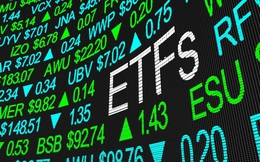 Các quỹ ETF do VFM quản lý tiếp tục hút vốn trong tuần 10-14/8