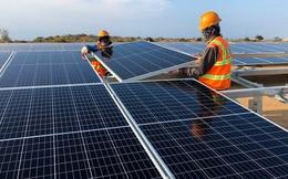 UBND tỉnh Ninh Thuận có sai phạm trong cấp phép dự án điện mặt trời
