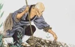 Gặp sư thầy đang chăm sóc cây, phật tử được chỉ cho 4 việc cần áp dụng để nuôi dạy con cái nên người: Bậc cha mẹ nên biết!