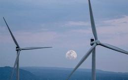 Tập đoàn lâu đời nhất Philippines sẽ đầu tư xây dựng trang trại điện gió 210 MW tại Việt Nam