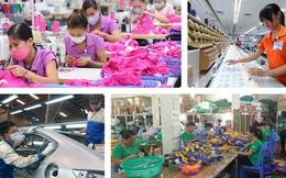 Phải cải cách triệt để mới tận dụng được các cơ hội từ EVFTA