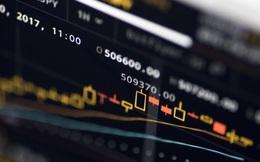 Những nhà đầu tư số 0 học đánh chứng trên... TikTok