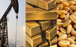 Thị trường ngày 27/8: Giá vàng đảo chiều tăng nhẹ, cà phê robusta lập đỉnh 8 tháng