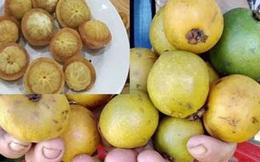 """Quảng Ngãi: Trái dại vị chua ngọt - """"anh em"""" của măng cụt ăn chơi nay thành đặc sản """"hút khách"""""""