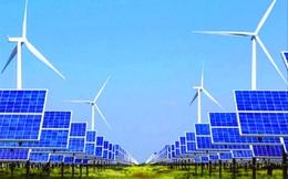 Quy hoạch điện VIII: Trông chờ năng lượng tái tạo