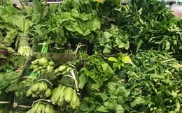 Chuyên gia mách làm sao để lựa chọn rau, củ quả sạch