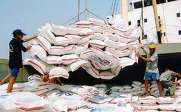 Xuất khẩu gạo của Campuchia tăng vọt sau 7 tháng đầu năm