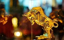 Tăng 227%, đây là cổ phiếu thăng hoa nhất ngành vàng nhưng công ty... không có một mỏ vàng nào