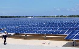 Sản lượng điện mặt trời 8 tháng năm 2020 của EVN tăng gấp gần 3 lần so với cùng kỳ