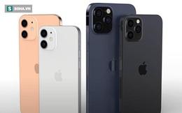 """IPhone 12 sắp ra mắt, giá iPhone đời cũ đồng loạt """"bốc hơi"""""""