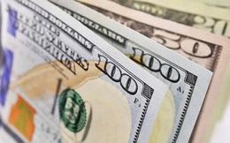 Các nước đang dùng chính sách tiền tệ và tài khoá như thế nào để vượt khó khăn do Covid-19?