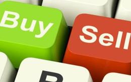 Thị giá TLP tăng 28% trong gần 2 tuần, Thành viên HĐQT Tổng Công ty Thanh Lễ đăng ký mua 36 triệu cổ phiếu