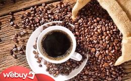 Những sản phẩm độc lạ làm từ hạt cà phê Việt: Loại dùng trên bàn ăn, loại dùng trong… phòng tắm