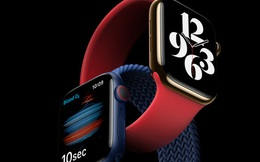 Apple Watch Series 6 ra mắt: Thiết kế không đổi, đo oxy trong máu, nhiều màu sắc và dây đeo mới, giá từ 399 USD