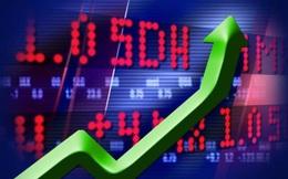 Hàng loạt cổ phiếu tăng gấp đôi, gấp ba trong thời gian qua