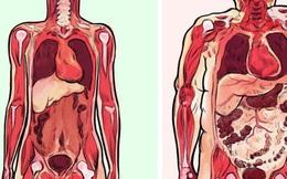 Mỡ bụng không chỉ làm bạn xấu đi, 5 mối nguy hiểm này còn khiến sức khỏe tồi tệ hơn