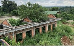 Ảnh: Khu xử lý nước thải hàng chục tỷ chỉ còn là đống hoang tàn, ô nhiễm tràn lan