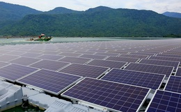 Lý do BIM, Trung Nam và hàng loạt tập đoàn đổ xô làm điện mặt trời: Lãi ngay hàng trăm tỷ mỗi năm mà chỉ mất vài tháng xây dựng