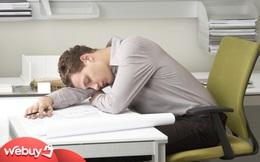 Giấc ngủ trưa rất quan trọng với dân văn phòng và đây là những món đồ giúp bạn ngon giấc hơn, tiếp sức cho buổi chiều làm việc hiệu quả