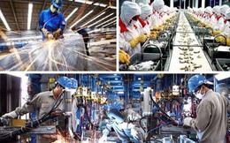 Nhiều cơ hội vàng đang chờ các doanh nghiệp Việt khai thác từ EVFTA
