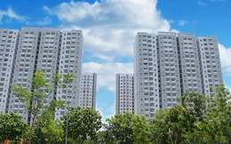 Địa ốc Sài Gòn (SGR) thông qua phương án phát hành hơn 14 triệu cổ phiếu trả cổ tức
