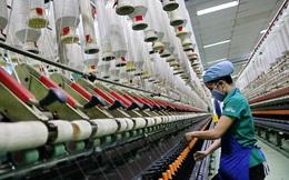 Nhiều doanh nghiệp dệt may Việt Nam chỉ nhận đơn theo từng tháng, thậm chí từng tuần