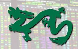 VEIL Dragon Capital nắm giữ lượng tiền mặt thấp nhất kể từ đầu năm 2020