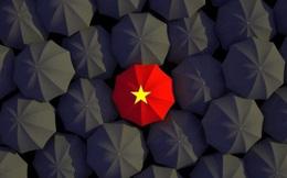 Lý do Việt Nam có thể trở thành lựa chọn hàng đầu trong hoạt động offshoring