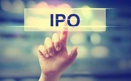 Đề xuất nhiều quy định mới tháo gỡ vướng mắc cho cổ phần hóa, thoái vốn