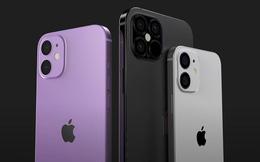 iPhone 12 6,1 inch sẽ được Apple bán ra trước, iPhone 12 5,4 inch và 6,7 inch sẽ trễ hẹn