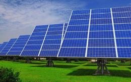 Sau chuỗi phiên tăng nóng, Licogi 13 giải thể công ty điện mặt trời do không hiệu quả