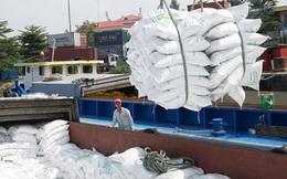 Vì sao gạo 'ngon nhất thế giới' của Việt Nam xuất khẩu vào EU chưa được hưởng thuế 0%?