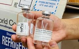 Vụ ngộ độc pate Minh Chay: WHO tài trợ khẩn cấp thuốc giải